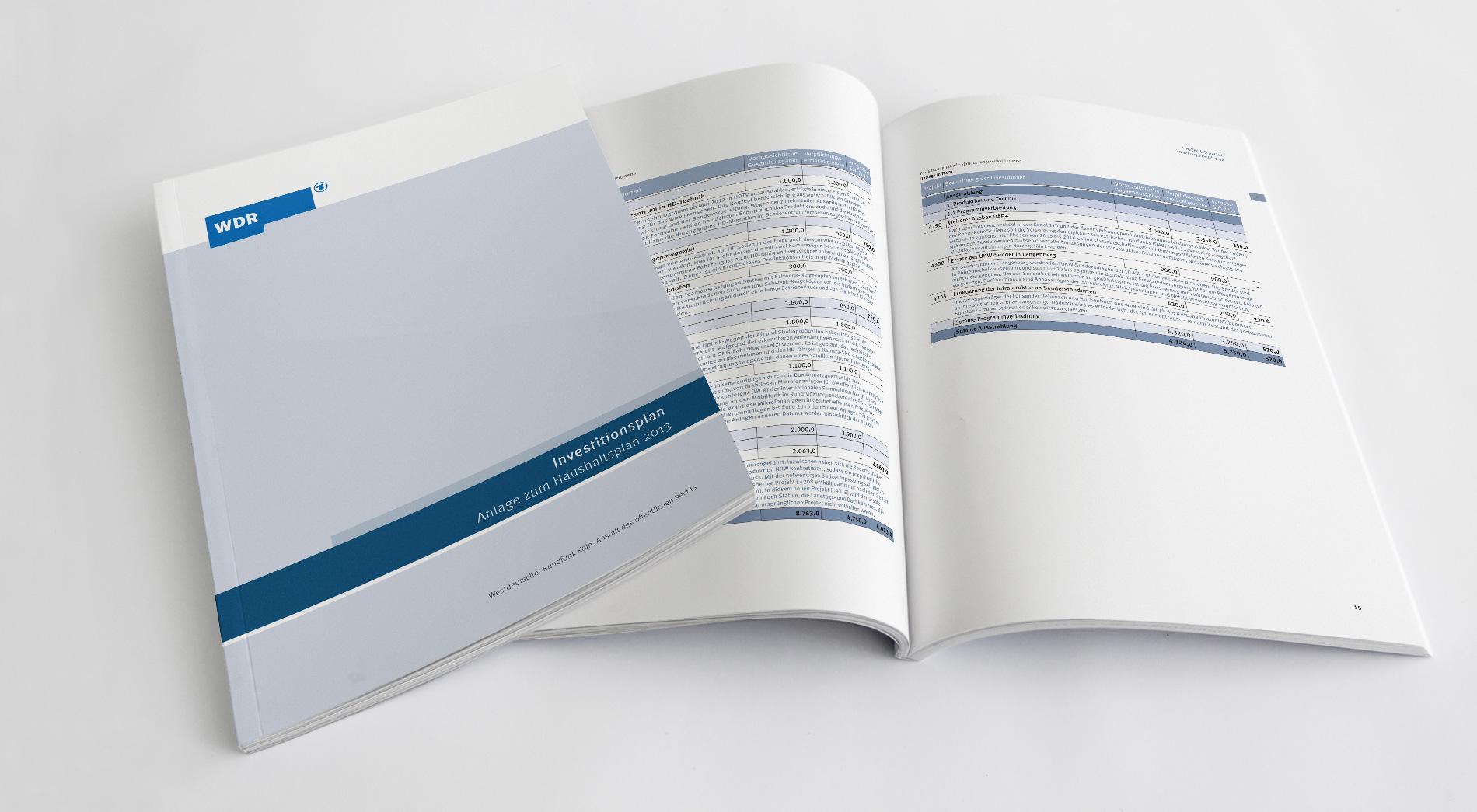 WDR Finanzpublikationen 2012, Investitionsplan 2013, Titel