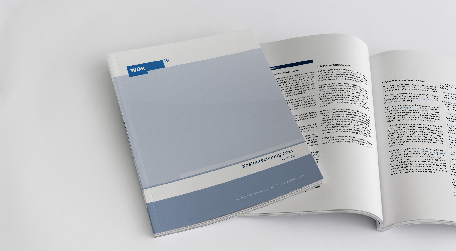 WDR Finanzpublikationen 2012, Kostenrechnung 2011, Titel